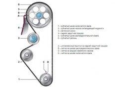 схема ГРМ 8 клапанов